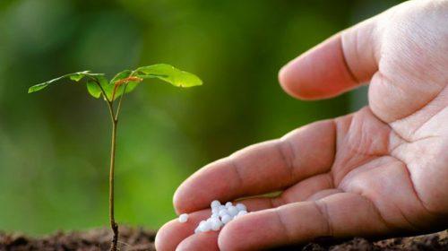 नेपालमा रासायनिक मल कारखाना स्थापना सम्भव