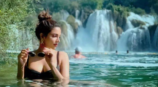 अभिनेत्री शमा सिकंदरका यी सुन्दर तस्वीर भाइरल भइरहेका छन् …