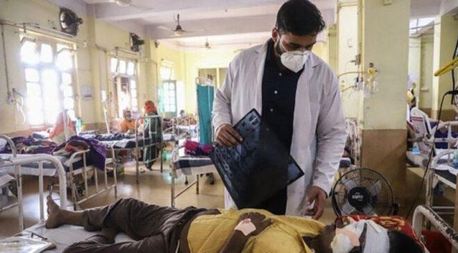 कालो ढुसीका कारण भारतमा ४ हजार ३ शय जनाको मृत्यु